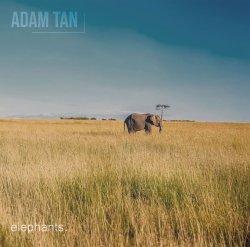 "Cover ""Elephants"", Adam Tan"